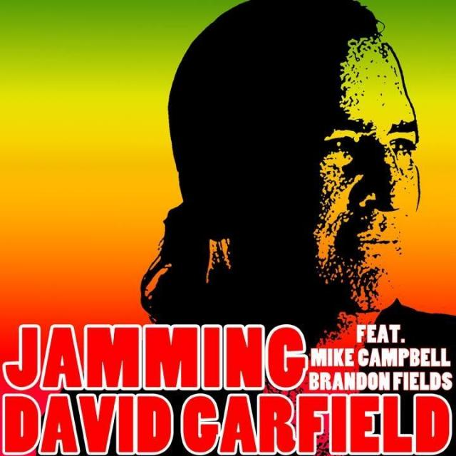 David Garfield - Jamming